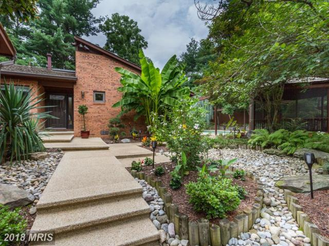 8001 Grand Teton Drive, Potomac, MD 20854 (#MC10315993) :: Dart Homes