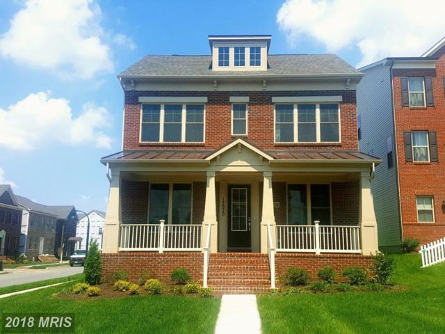 13930 Godwit Street, Clarksburg, MD 20871 (#MC10319359) :: SURE Sales Group