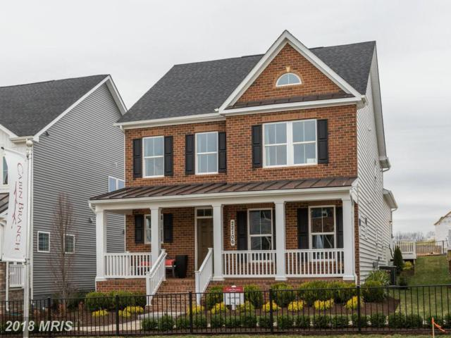 21902 Broadway Avenue, Clarksburg, MD 20871 (#MC10323587) :: Jim Bass Group of Real Estate Teams, LLC