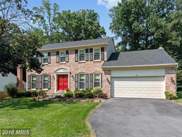 14720 Peachwood Drive, Silver Spring, MD 20905 (#MC10324406) :: The Sky Group