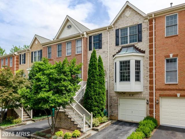 226 Blaze Climber Way, Rockville, MD 20850 (#MC10324885) :: Dart Homes
