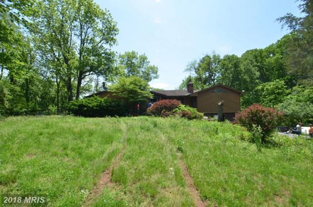 18810 River Road, Poolesville, MD 20837 (#MC10340969) :: RE/MAX Executives
