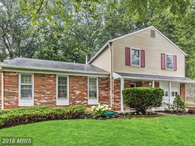 13602 Loree Lane, Rockville, MD 20853 (#MC10344088) :: Colgan Real Estate