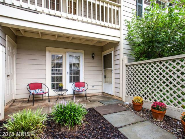 20526 Shadyside Way #49, Germantown, MD 20874 (#MC10346511) :: The Sebeck Team of RE/MAX Preferred