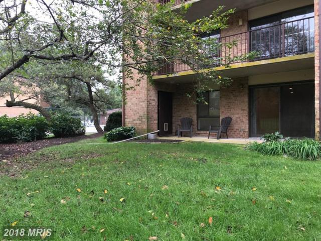 13205 Dairymaid Drive #58, Germantown, MD 20874 (#MC10347502) :: The Sebeck Team of RE/MAX Preferred