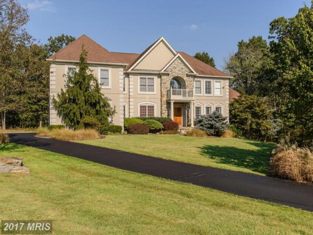 11405 Palatine Drive, Potomac, MD 20854 (#MC9010789) :: Dart Homes