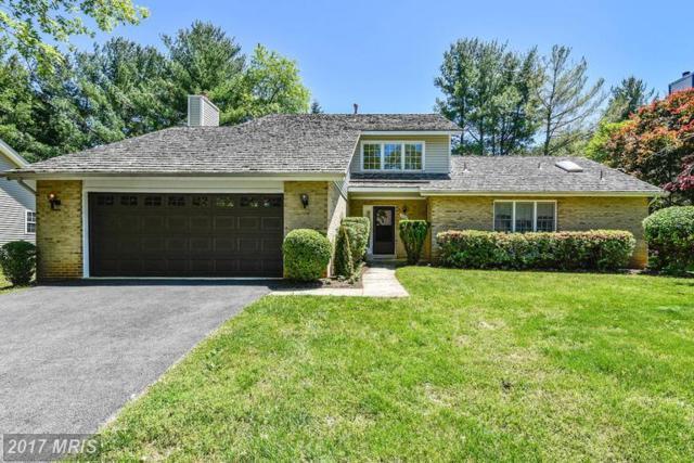 14507 Rich Branch Drive, North Potomac, MD 20878 (#MC9933260) :: LoCoMusings