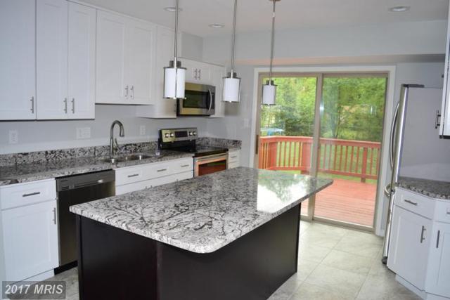 4804 Levada Terrace, Rockville, MD 20853 (#MC9937522) :: LoCoMusings