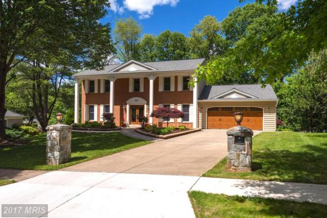 1523 Blue Meadow Road, Potomac, MD 20854 (#MC9944941) :: LoCoMusings