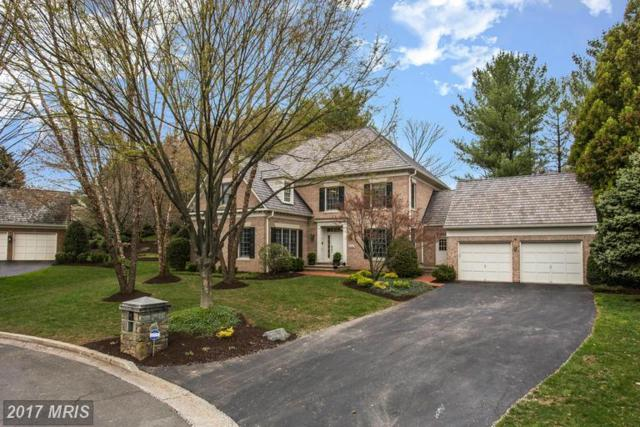 9304 Crimson Leaf Terrace, Potomac, MD 20854 (#MC9951341) :: LoCoMusings