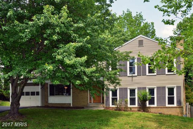 12013 Winesap Terrace, North Potomac, MD 20878 (#MC9954196) :: LoCoMusings