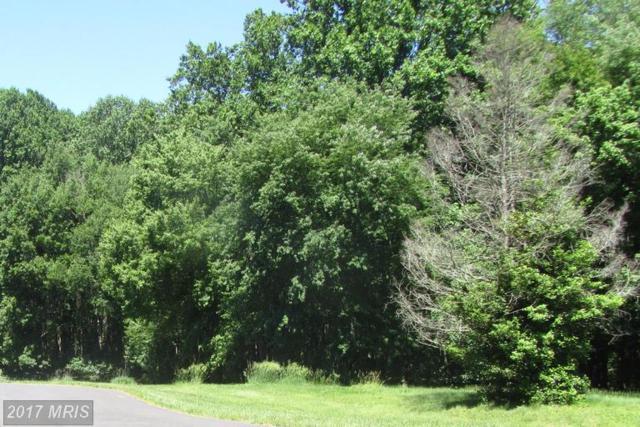 18624 Hillside Terrace, Rockville, MD 20855 (#MC9966403) :: Pearson Smith Realty