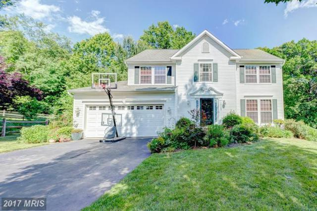 19309 Ranworth Drive, Germantown, MD 20874 (#MC9966967) :: Dart Homes