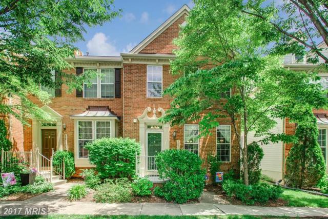 18137 Stags Leap Terrace, Germantown, MD 20874 (#MC9975230) :: Dart Homes