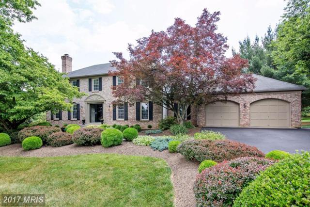 21611 Stableview Drive, Gaithersburg, MD 20882 (#MC9980683) :: The Sebeck Team of RE/MAX Preferred