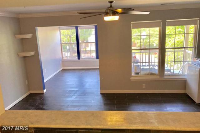 13103-BUILDING: Briarcliff Terrace 10-1005, Germantown, MD 20874 (#MC9981197) :: LoCoMusings