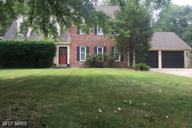 13712 Lockdale Road, Silver Spring, MD 20906 (#MC9982614) :: Pearson Smith Realty