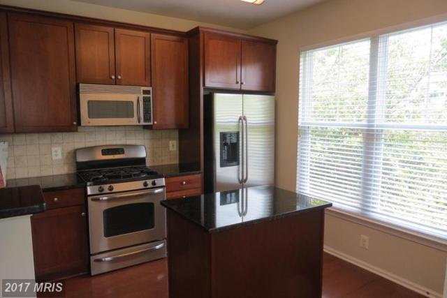 11800 Old Georgetown Road #1528, Rockville, MD 20852 (#MC9982939) :: Dart Homes