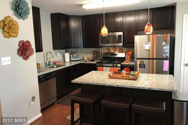 22622 Majestic Elm Court #55, Clarksburg, MD 20871 (#MC9983569) :: Dart Homes