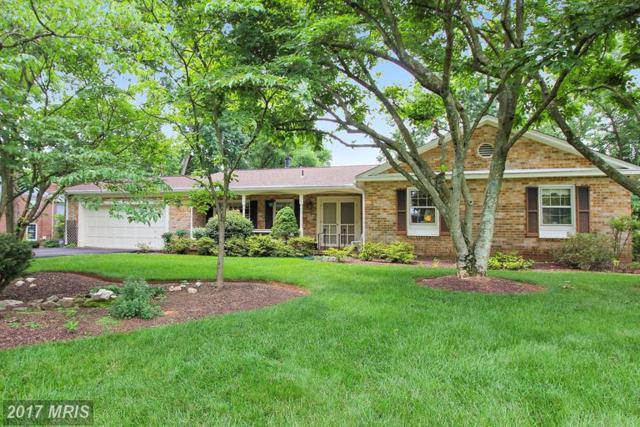 8822 Maxwell Drive, Potomac, MD 20854 (#MC9986007) :: Dart Homes