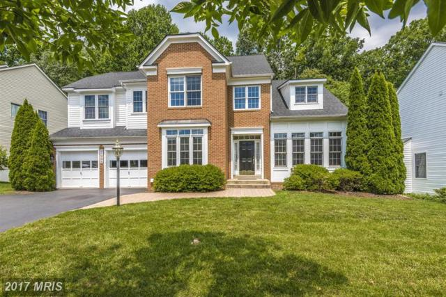 21225 Hickory Forest Way, Germantown, MD 20876 (#MC9986050) :: Dart Homes