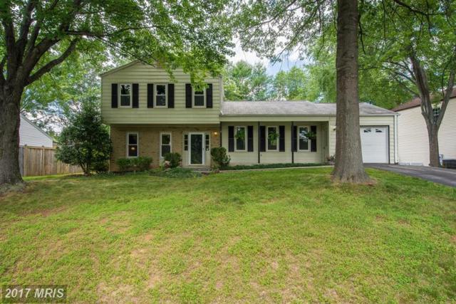 15208 Apricot Lane, North Potomac, MD 20878 (#MC9986167) :: Dart Homes