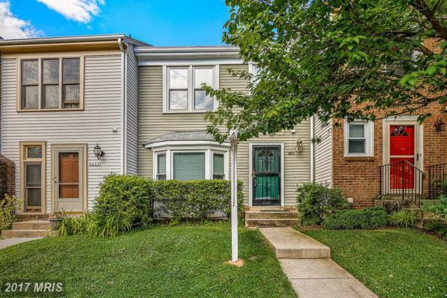 9021 Saffron Lane, Silver Spring, MD 20901 (#MC9987086) :: Gary Walker at RE/MAX Realty Services
