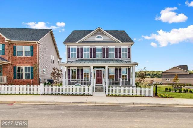 4304 Arbor Wood Court, Burtonsville, MD 20866 (#MC9988114) :: Network Realty Group