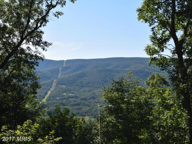 Bear Ridge Road, New Creek, WV 26743 (#MI10028993) :: Pearson Smith Realty