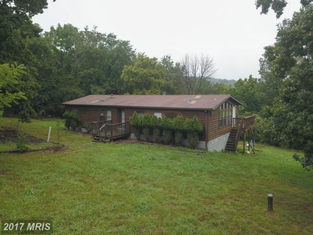 1300 Whitetail Ridge Road, Burlington, WV 26710 (#MI10034366) :: Pearson Smith Realty