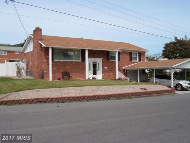 1430 Terri Street, Keyser, WV 26726 (#MI10056525) :: LoCoMusings