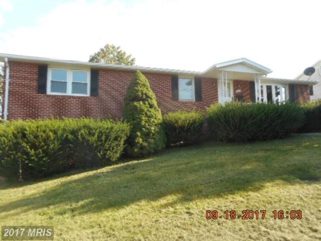 1515 Terri Street, Keyser, WV 26726 (#MI10065627) :: Pearson Smith Realty