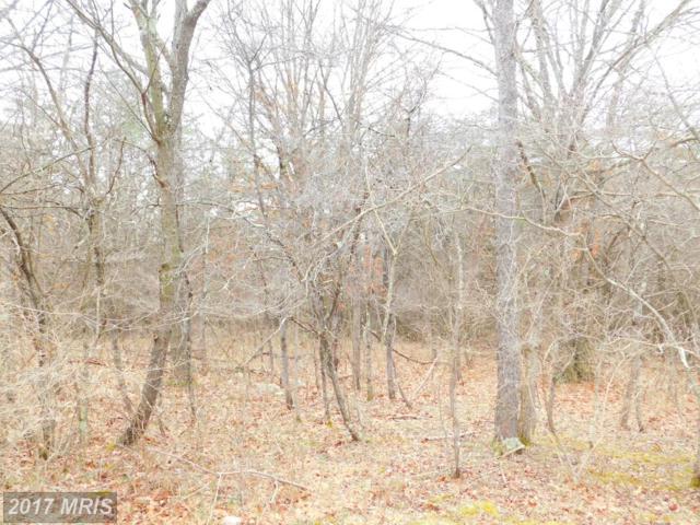 The Woods/S-Div Knobley Road, Keyser, WV 26726 (#MI10083692) :: Pearson Smith Realty