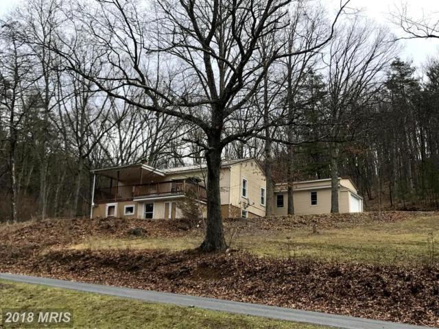 4553 Push Root Road, Keyser, WV 26726 (#MI10187672) :: Blackwell Real Estate