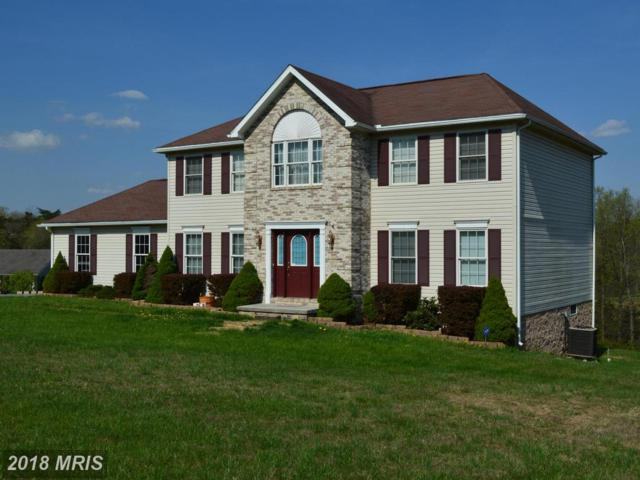 37 Deerfield Drive, Fort Ashby, WV 26719 (#MI10228540) :: The Gus Anthony Team