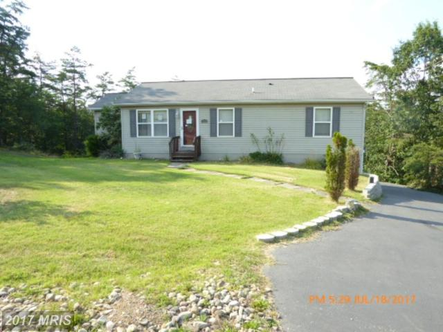111 Evergreen Drive, Fort Ashby, WV 26719 (#MI9830204) :: Pearson Smith Realty