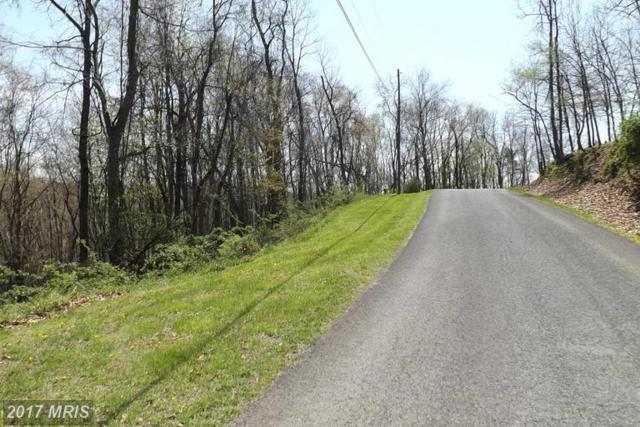 1000 Pinepointe Drive, Keyser, WV 26726 (#MI9918258) :: LoCoMusings