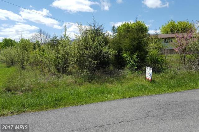 Wood Ridge Drive, New Creek, WV 26743 (#MI9927836) :: Pearson Smith Realty