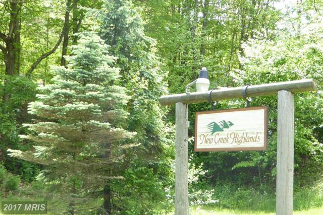 30 Autumn Leaf Drive, New Creek, WV 26743 (#MI9939463) :: LoCoMusings