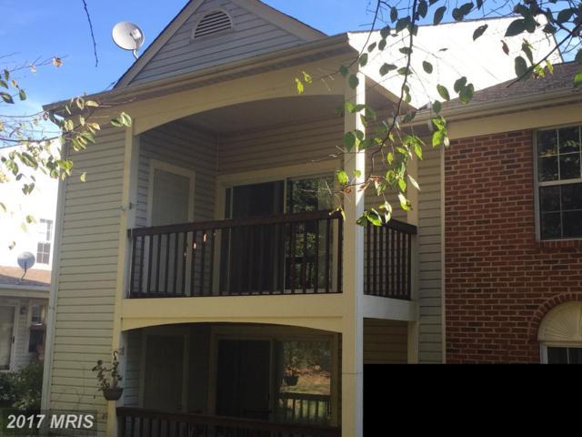 9372 Scarlet Oak Drive #9372, Manassas, VA 20110 (#MN10086272) :: Arlington Realty, Inc.