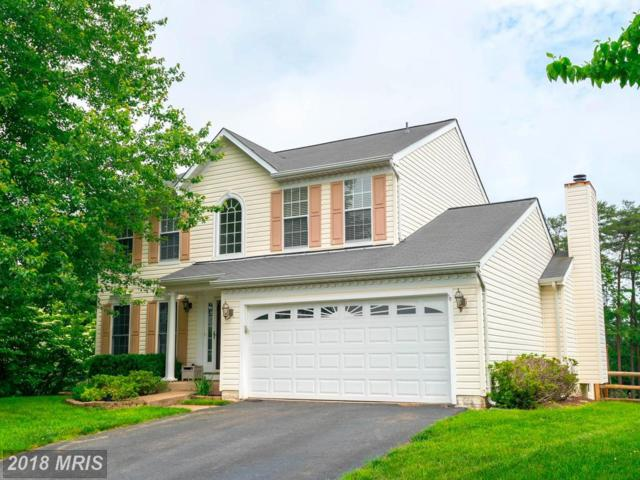 10113 Lavender Flower Court, Manassas, VA 20110 (#MN10255582) :: Jim Bass Group of Real Estate Teams, LLC