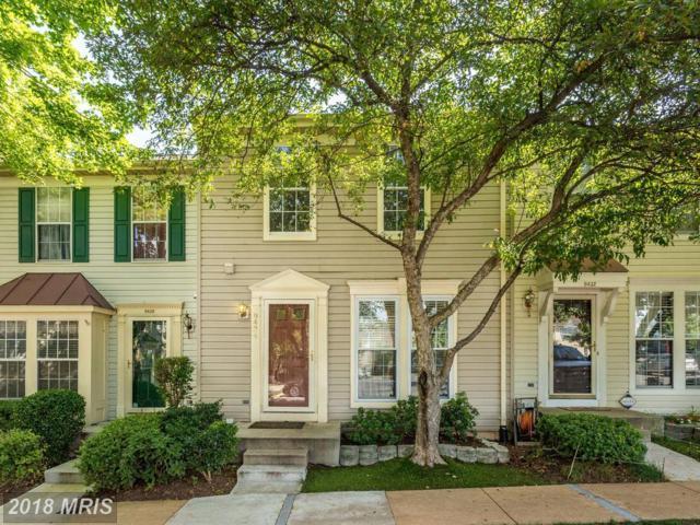 9434 Teaberry Court, Manassas, VA 20110 (#MN10284708) :: Provident Real Estate