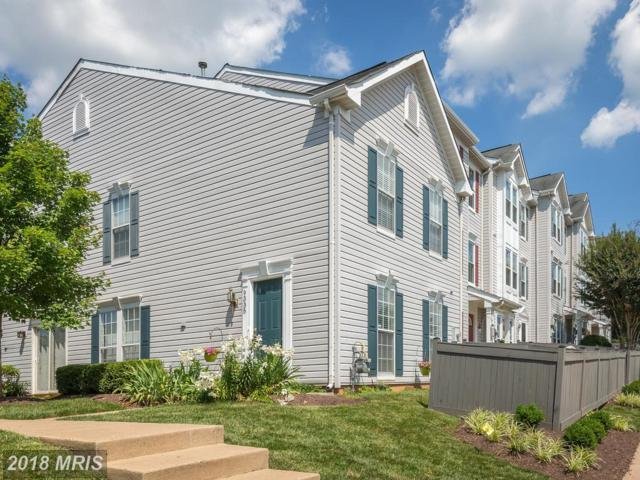 9335 Gooseberry Drive, Manassas, VA 20110 (#MN10286054) :: Charis Realty Group