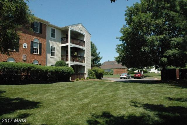 9346 English Oak Court #9346, Manassas, VA 20110 (#MN9986952) :: Network Realty Group