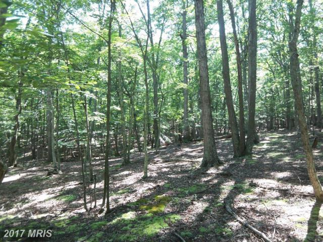 29 Honey Locust Lane, Great Cacapon, WV 25422 (#MO10023891) :: Pearson Smith Realty