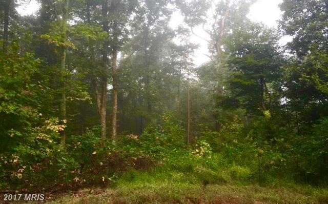 35.21 AC Orchard Lane, Paw Paw, WV 25434 (#MO10074012) :: LoCoMusings