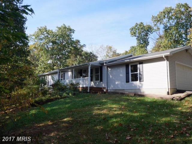 1254 Orchard Drive, Berkeley Springs, WV 25411 (#MO10075854) :: LoCoMusings