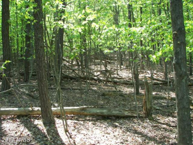 0 Hill Top, Great Cacapon, WV 25422 (#MO10082686) :: Pearson Smith Realty