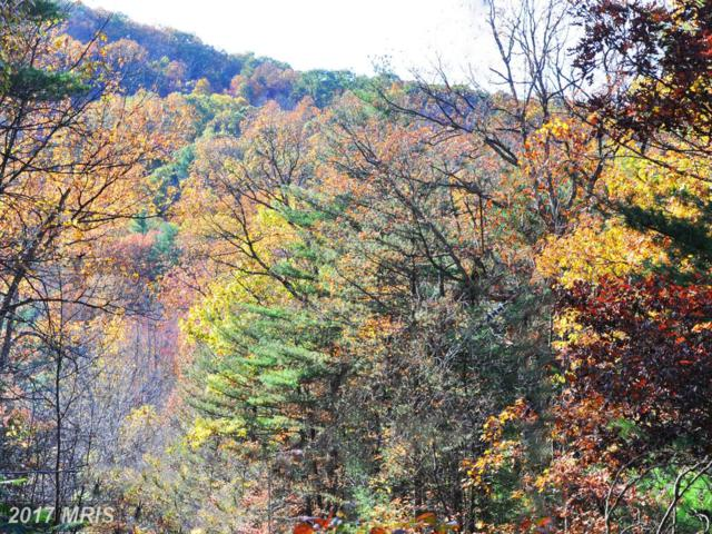 LOT 3 River Road, Paw Paw, WV 25434 (#MO10094174) :: Pearson Smith Realty