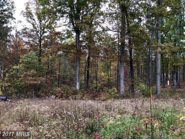 9.6 ACRES Householder Road, Berkeley Springs, WV 25411 (#MO10096422) :: Pearson Smith Realty